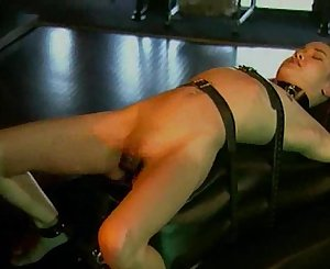 Kitty Restrain bondage Fantasy